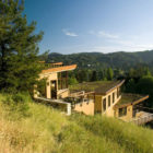 Mill Valley Hillside by McGlashan Architecture