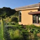 Mill Valley Hillside by McGlashan Architecture