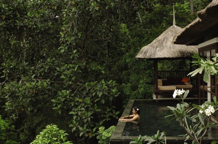 ubud hanging gardens in bali - Ubud Hanging Gardens Bali Indonesia