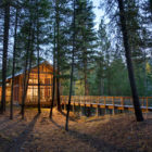 Foster Loop by Balance Associates Architects