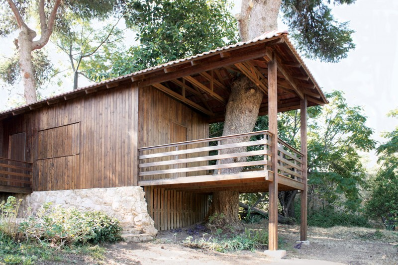 Two-Tree House by Golany Architects