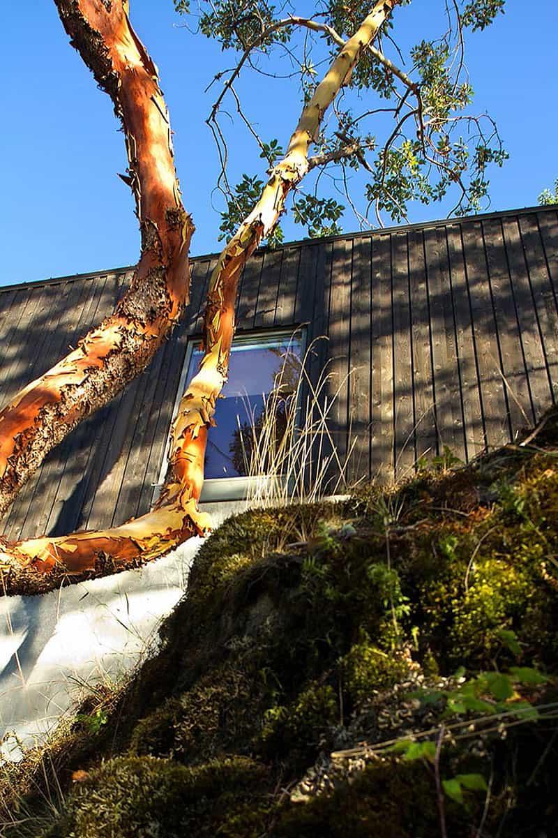 omer arbel office designrulz 14 gambier island retreat by battersby howat architects