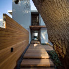 La Lucia by SAOTA and Antoni Associates (3)