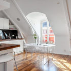 Swedish Penthouse in the Roeda Bergen  (4)