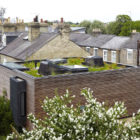 Hairy House by Ashworth Parkes Architects (5)