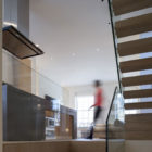 Butterfly Loft Apartment by Tigg and Coll Architects (4)