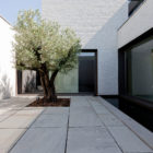 Courtyard House VW (5)