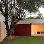 House of Agostos by Pedro Domingos Arquitectos (1)