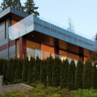 Palmerston Residence by Mehran Mansouri (3)