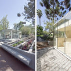 Catch the Tree by LAND Arquitectos (1)
