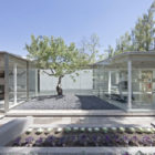 Catch the Tree by LAND Arquitectos (2)