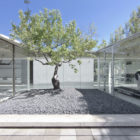 Catch the Tree by LAND Arquitectos (3)