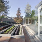 Catch the Tree by LAND Arquitectos (4)