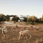 Villa Extramuros by Vora Arquitectura (1)
