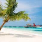 5 Star LUX* Maldives Resort (2)