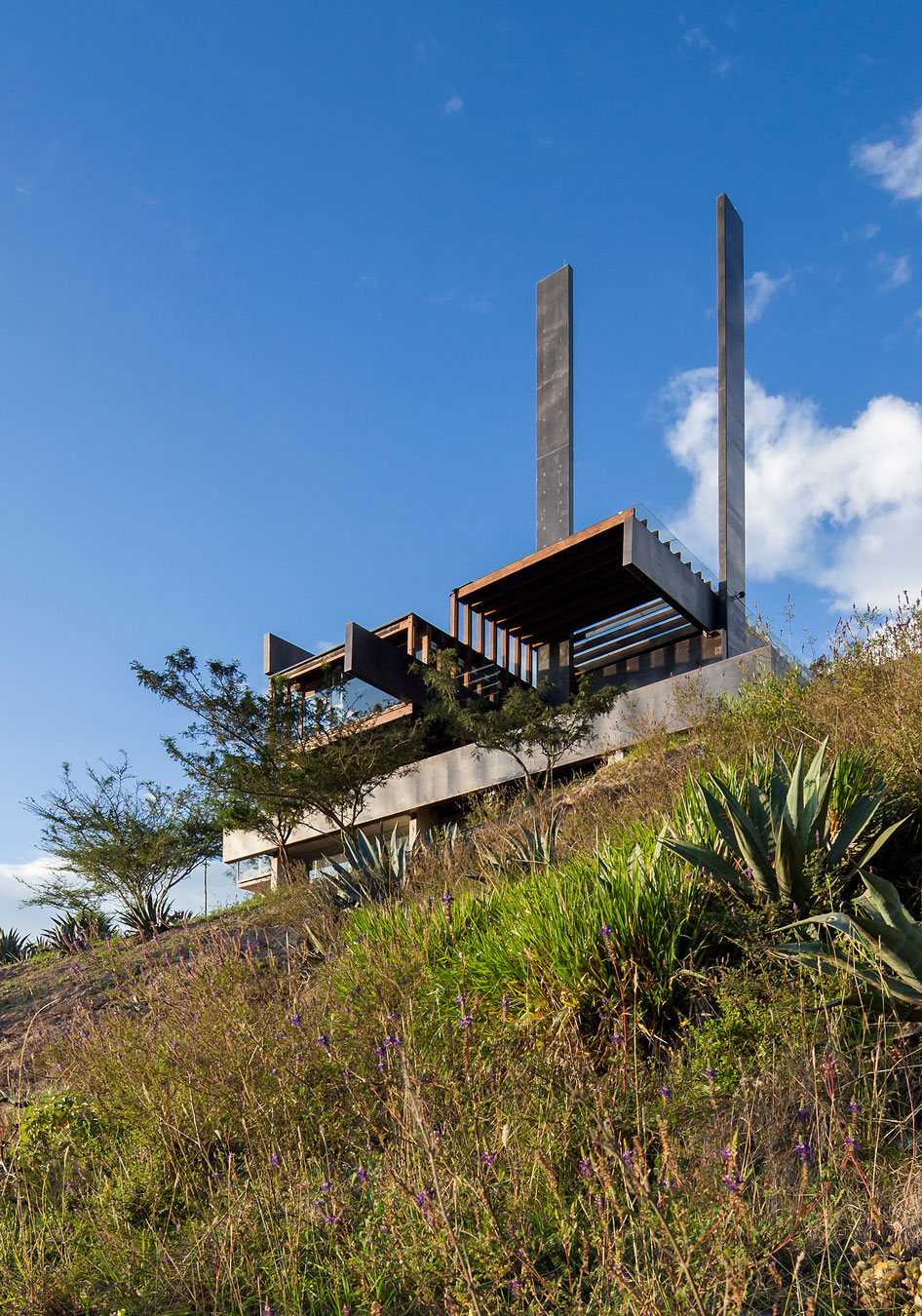 Algarrobos House by Saez and  Flores (3)