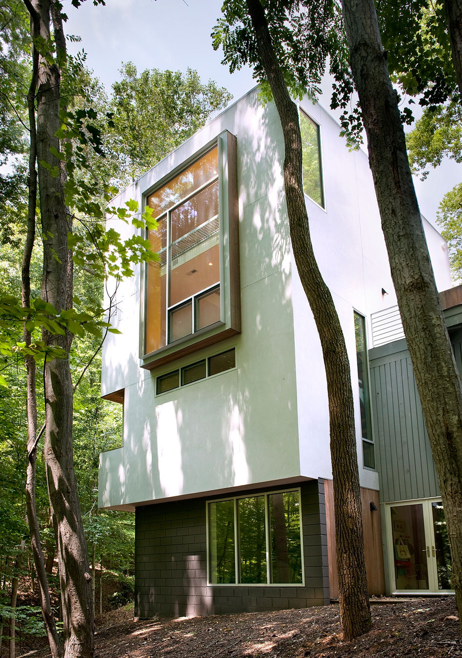 Forest House by Kube Architecture  (3)