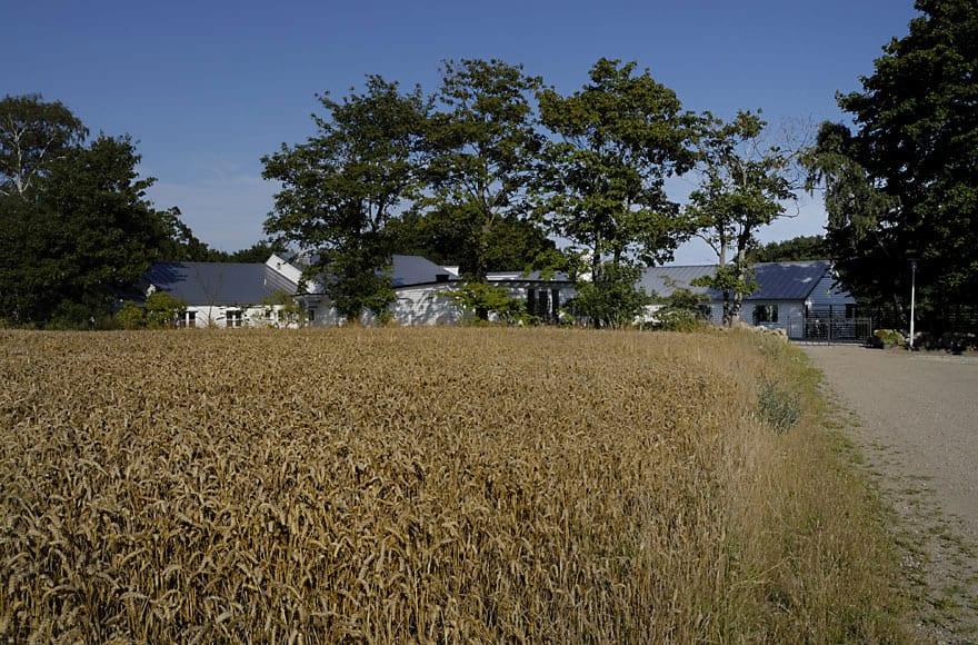 Brook Farm in Simrishamn (2)
