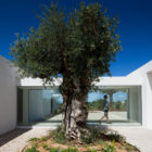 House in Tavira by Vitor Vilhena Architects (5)