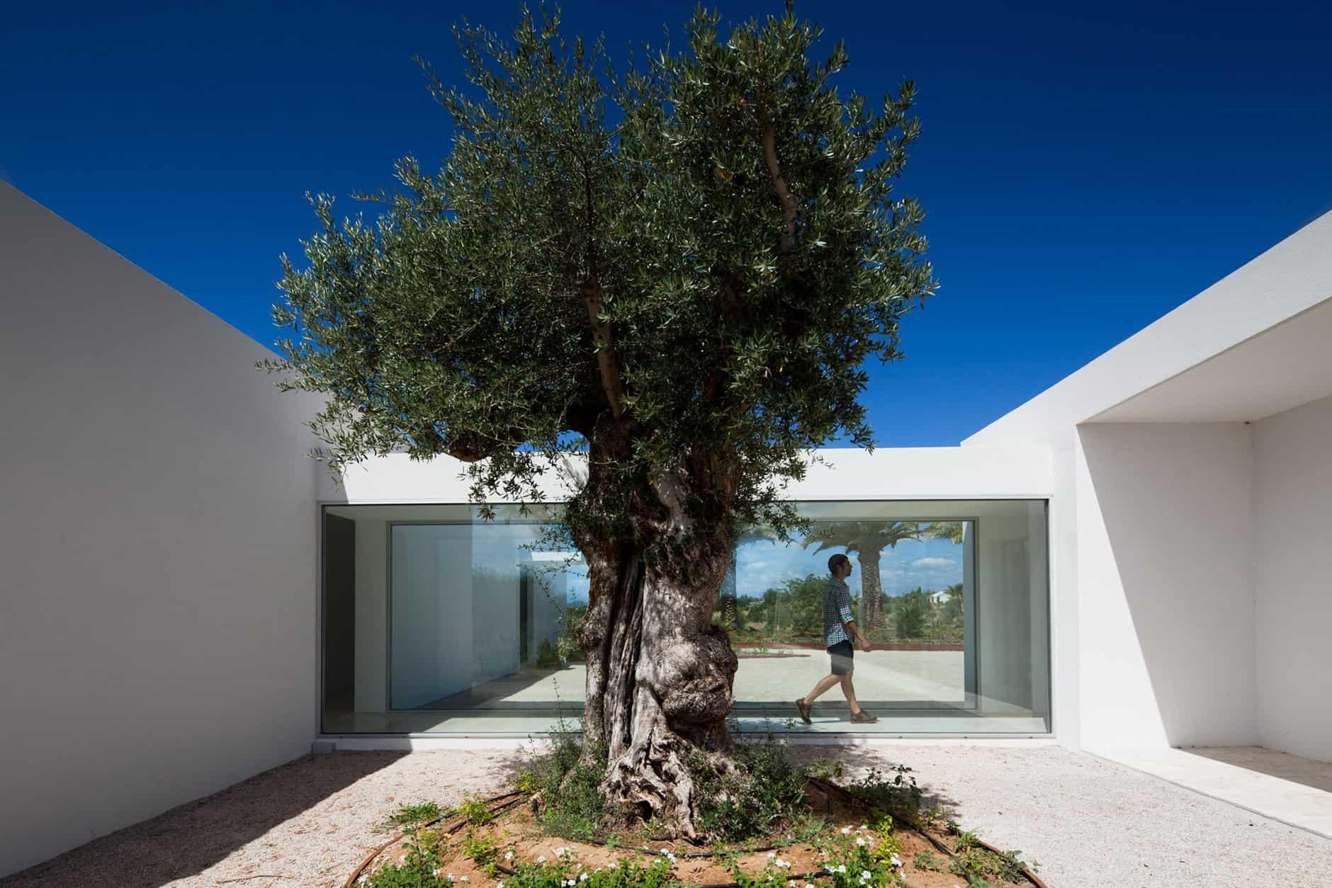 House in Tavira by Vitor Vilhena Architects (5)