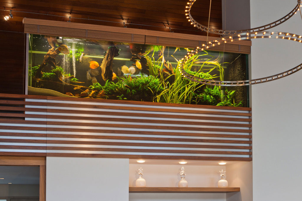 Villa with Aquarium by Centric Design Group (3)