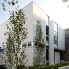 Bucktown Three by Studio Dwell Architects (2)