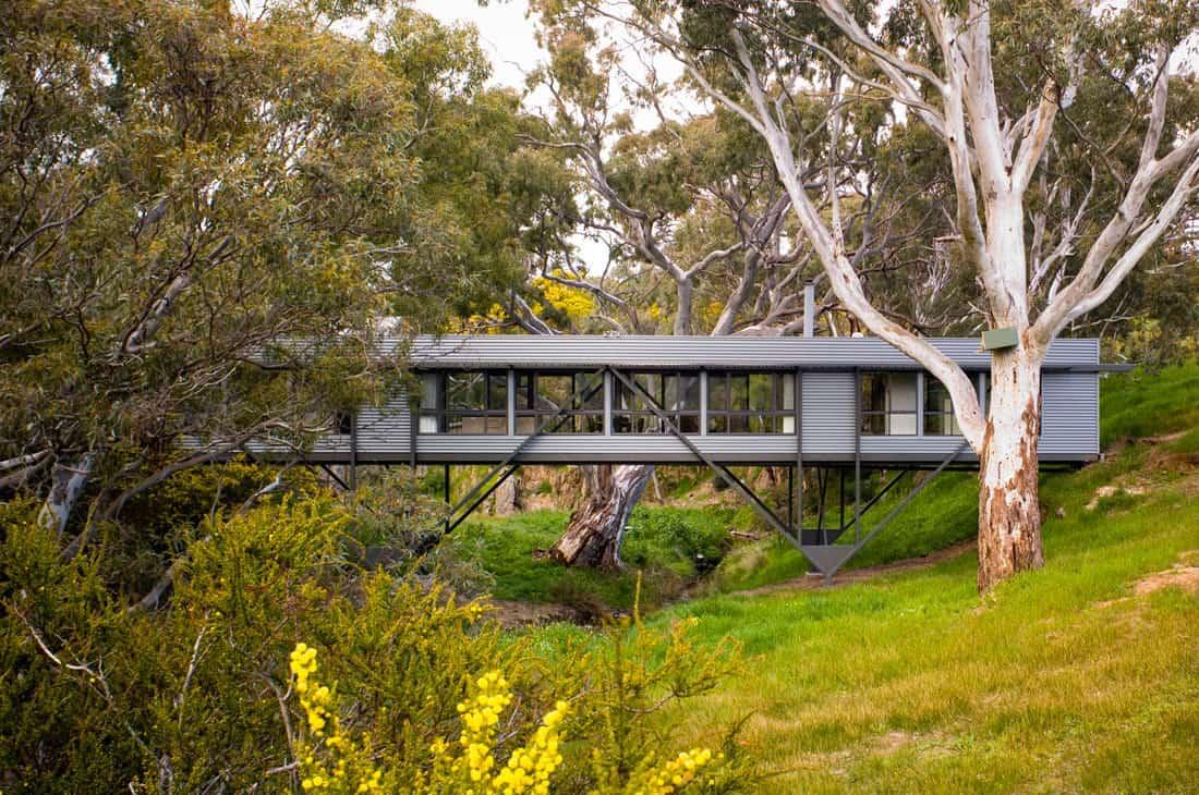 Bridge House by Max Pritchard Architect (2)