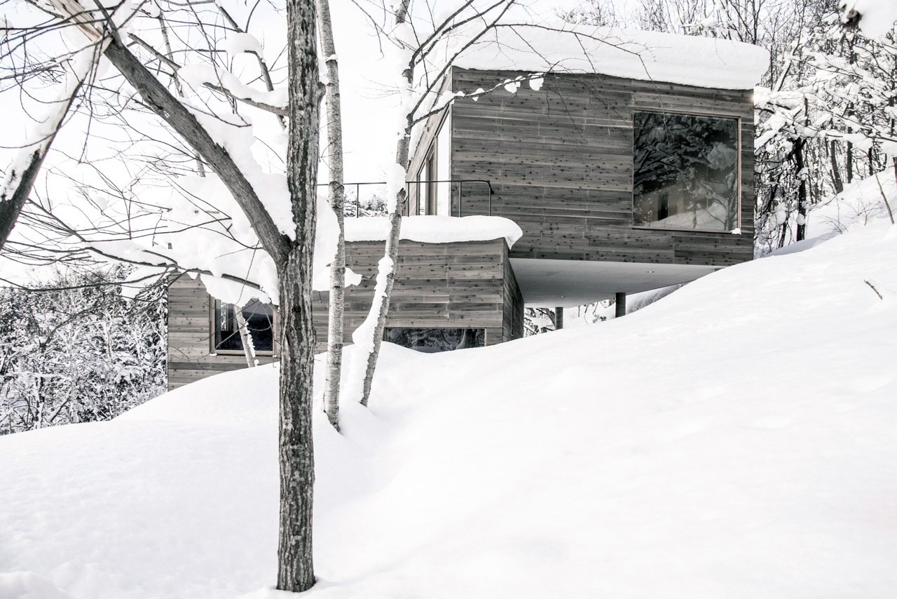 L House by Florian Busch Architects (2)
