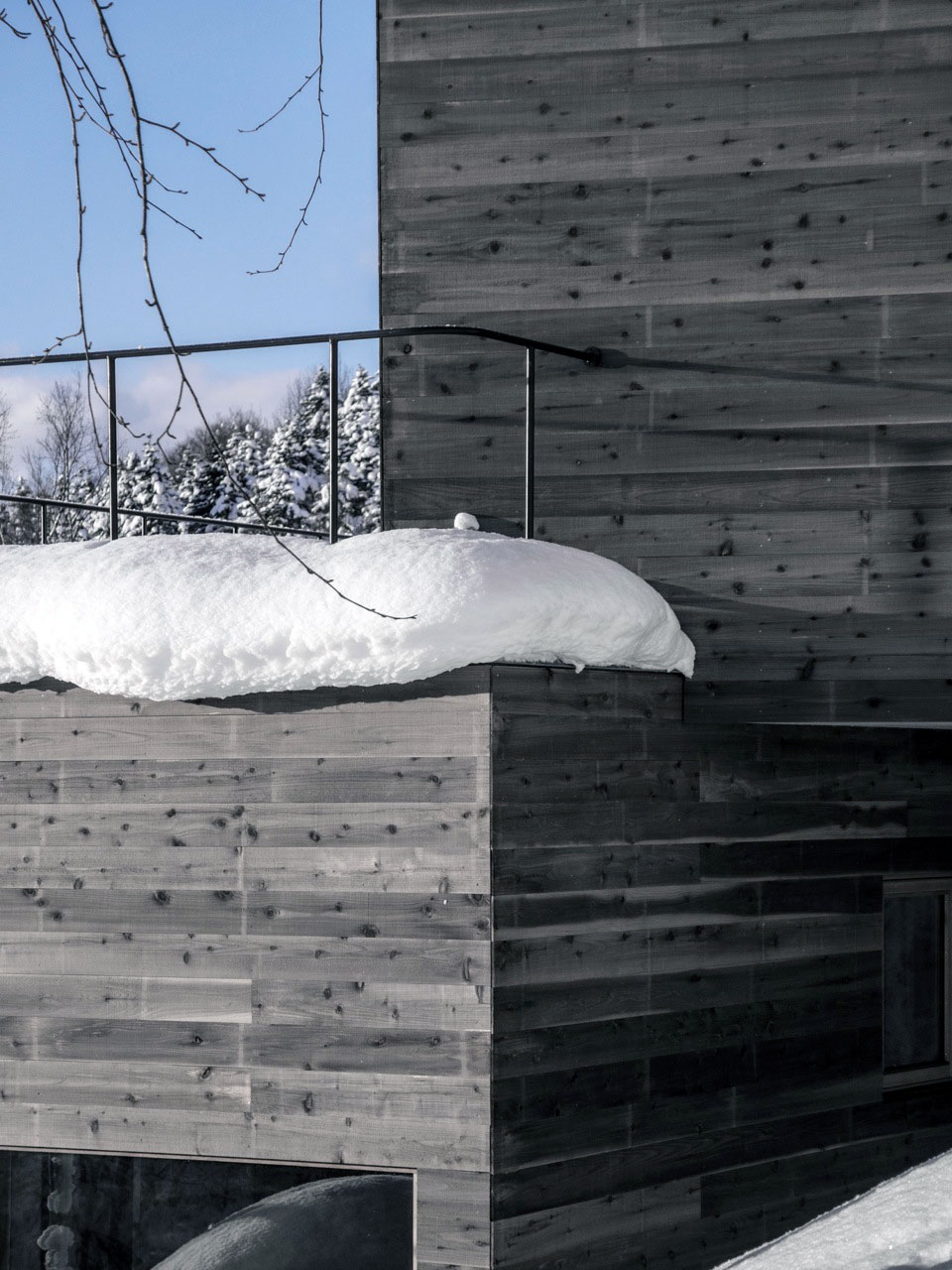 L House by Florian Busch Architects (4)