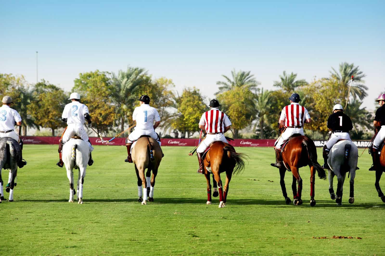 Desert Palm Dubai (3)