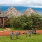 The Ngorongoro Crater Lodge (5)