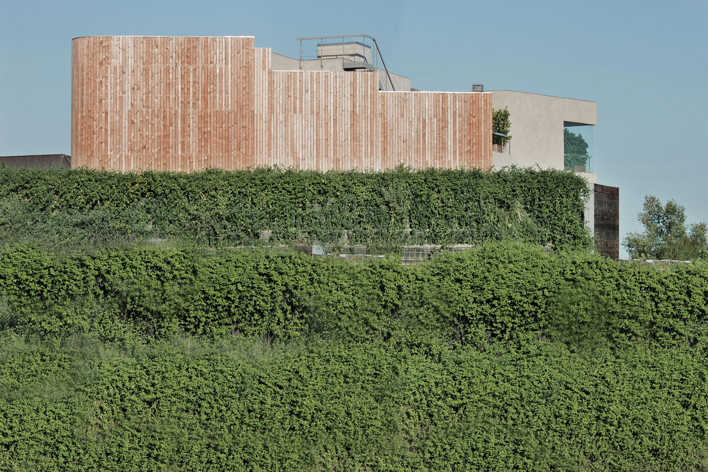 House Pedralbes by BCarquitectos (3)