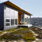 Ballard Cut by Prentiss Architects (4)