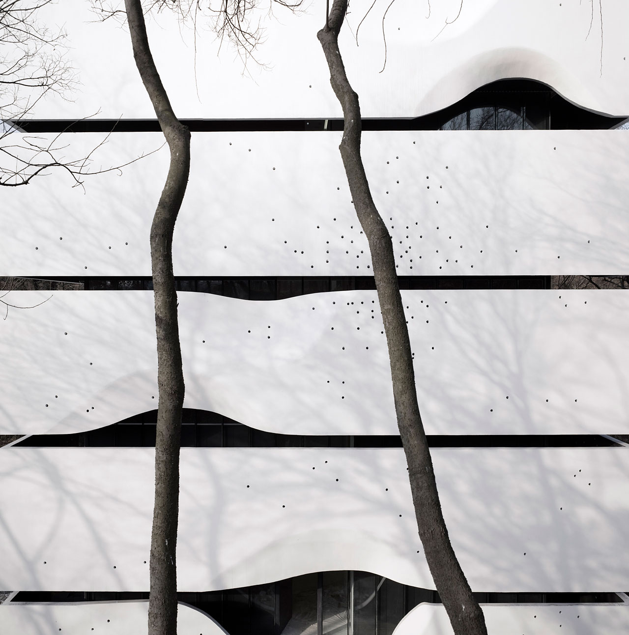 CIPEA No.4 House by AZL architects (3)