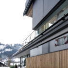 Haus Walde by Gogl Architekten (4)