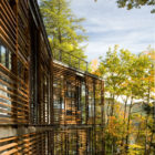 Lakeside Retreat by GLUCK+ (4)