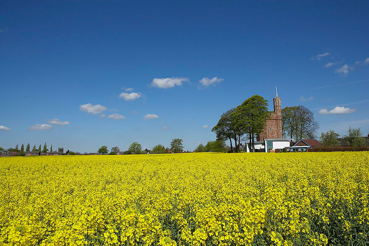 Lymm Water Tower by Ellis Williams Architects