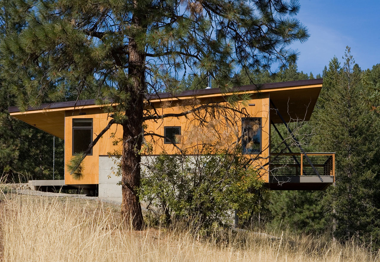 Pine Forest Cabin by Balance Associates Architects (3)