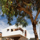 Suburban Beach House by David Barr Ross Brewin (5)
