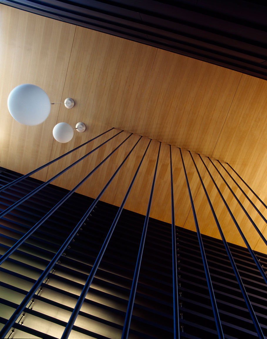 Balmoral House by Fox Johnston Architects (4)