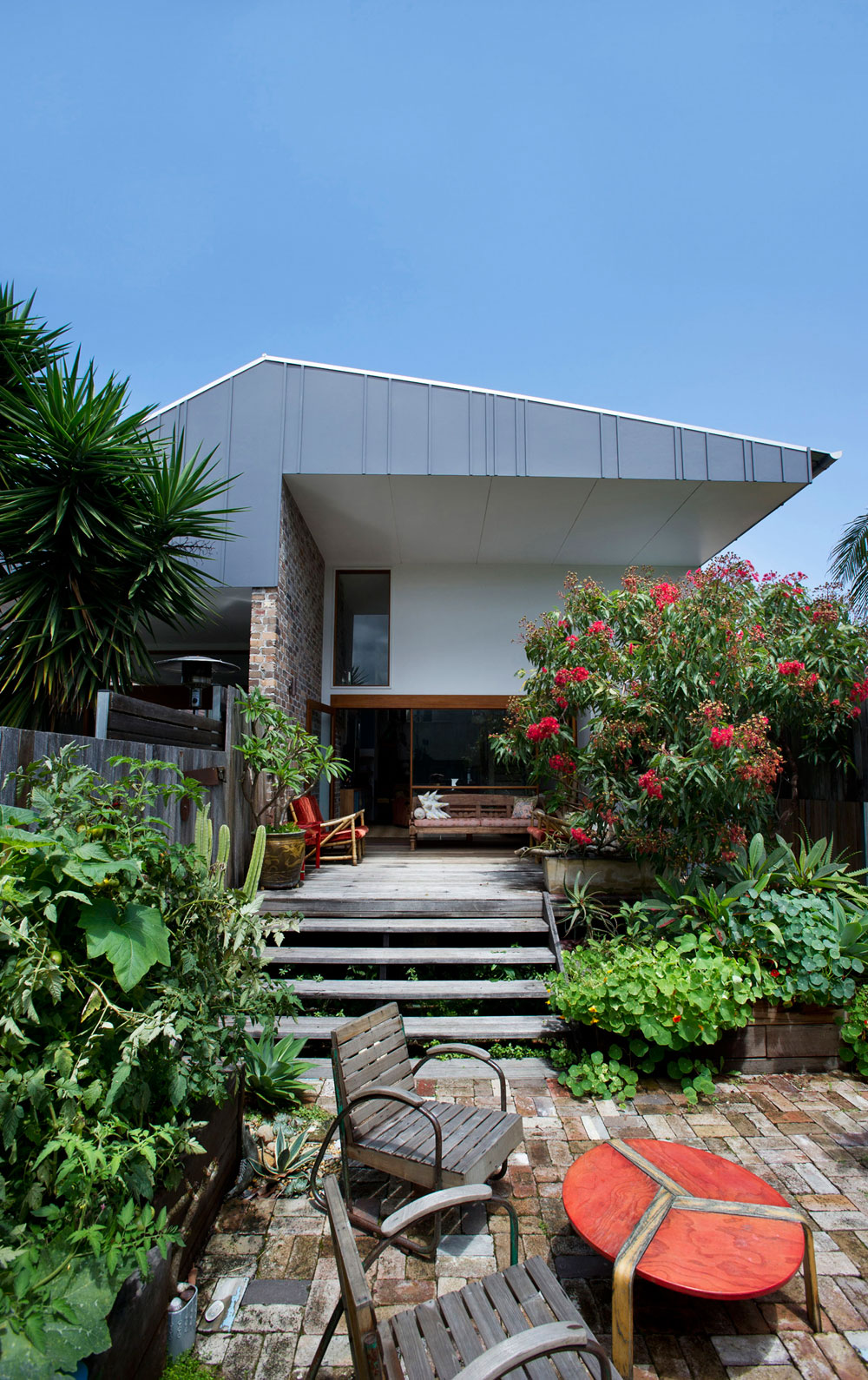 Marrickville House by  David Boyle Architect (1)