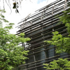 Nest House by WOHA Architects (3)