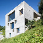 New Concrete House by Wespi de Meuron Architekten (1)