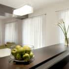 Pan Apartment by Carola Vannini Architecture (3)
