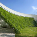 Green Screen House by Hideo Kumaki Architect Office (5)