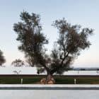 Ribatejo House by Atelier Nuno Lacerda Lopes (4)