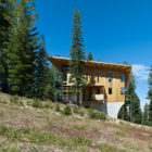 Crow's Nest Residence by Mt. Lincoln Construction (2)