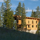Crow's Nest Residence by Mt. Lincoln Construction (3)