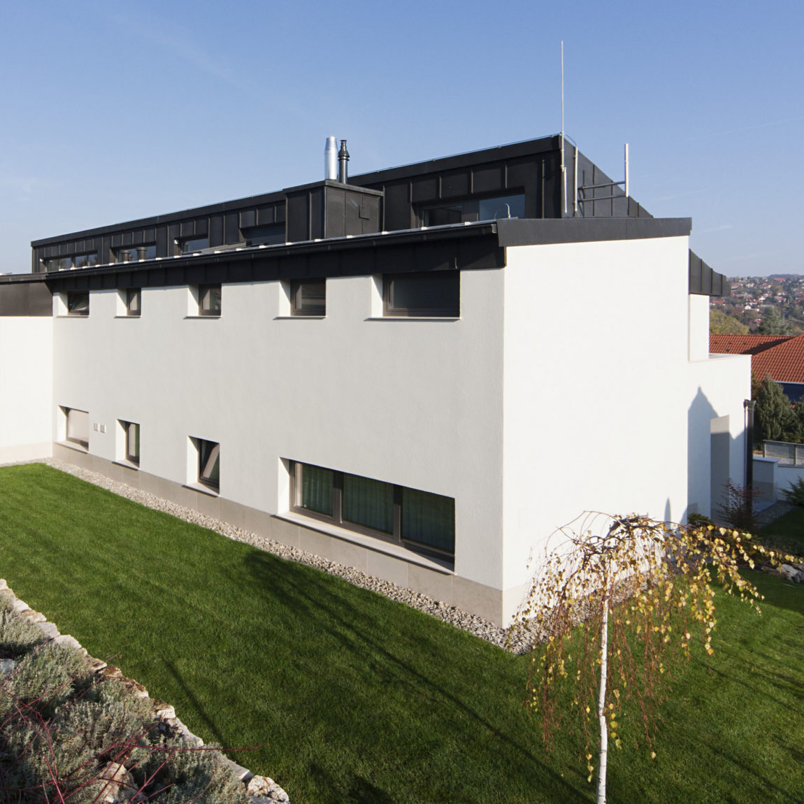 Sommelier's Home by by Architema (5)