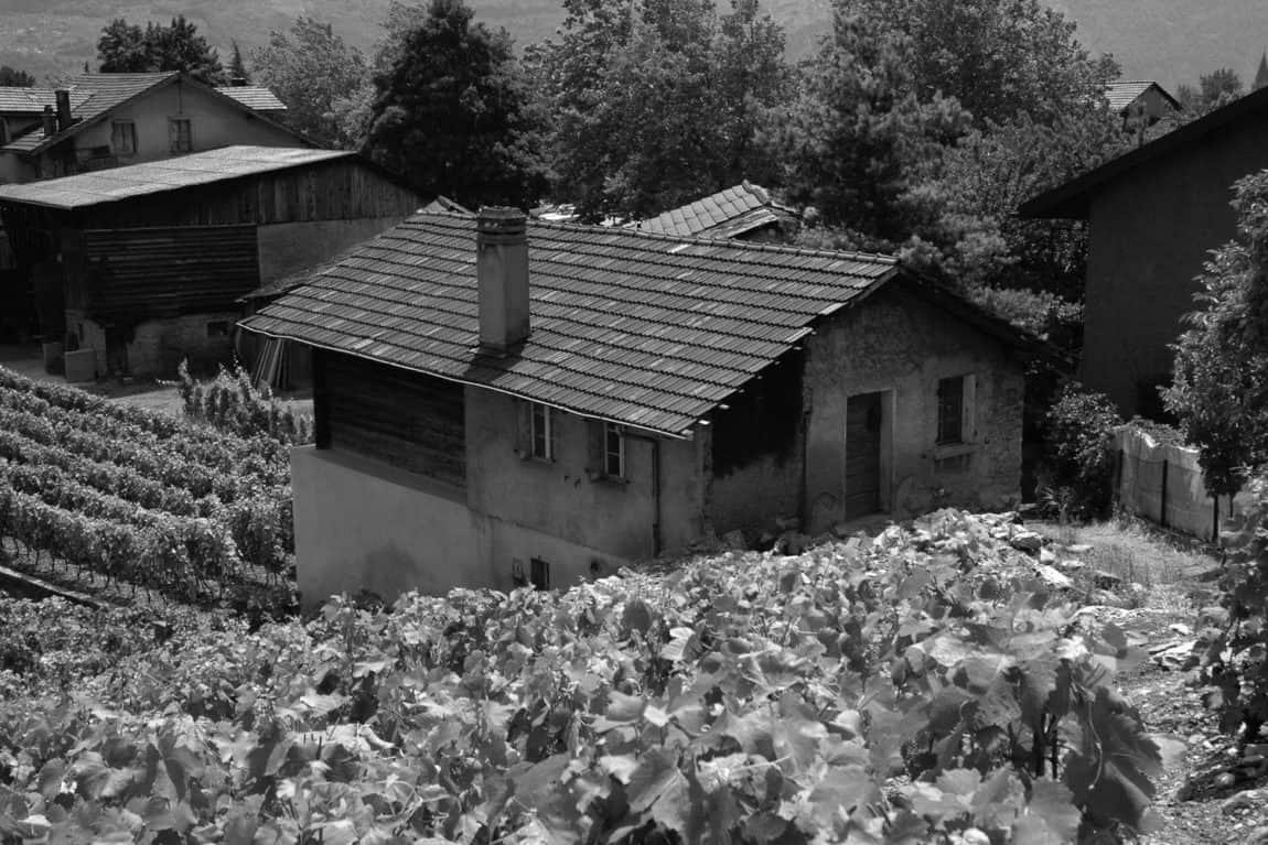 Germanier House by Savioz Fabrizzi Architecte (1)